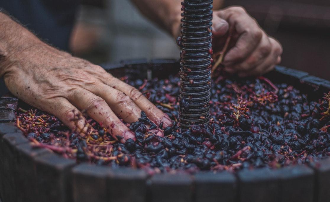 Верховная рада легализировала мелкое виноделие в Украине